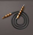 coiled hookah hose vector image