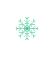 Flake of snow Icon vector image