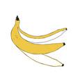 Banana peel isolated vector image