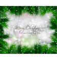 Elegant Classic Christmas flyer with tree leaves vector image