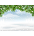Winter background with pine branches vector image
