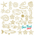 Sea set Stingray jellyfish seaweed fish starfish vector image vector image