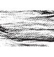 DSC 0515123 vector image