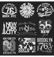 New York t-shirt set vector image