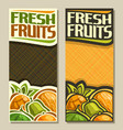 banners for fresh fruits vector image