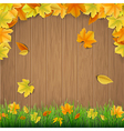 Autumn leaves wooden boards and green grass vector image