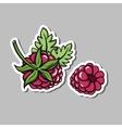 RaspberrySticker vector image