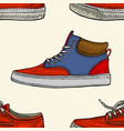 red and blue shoes vector image