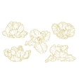 Set of one-colored outlined tulips vector image