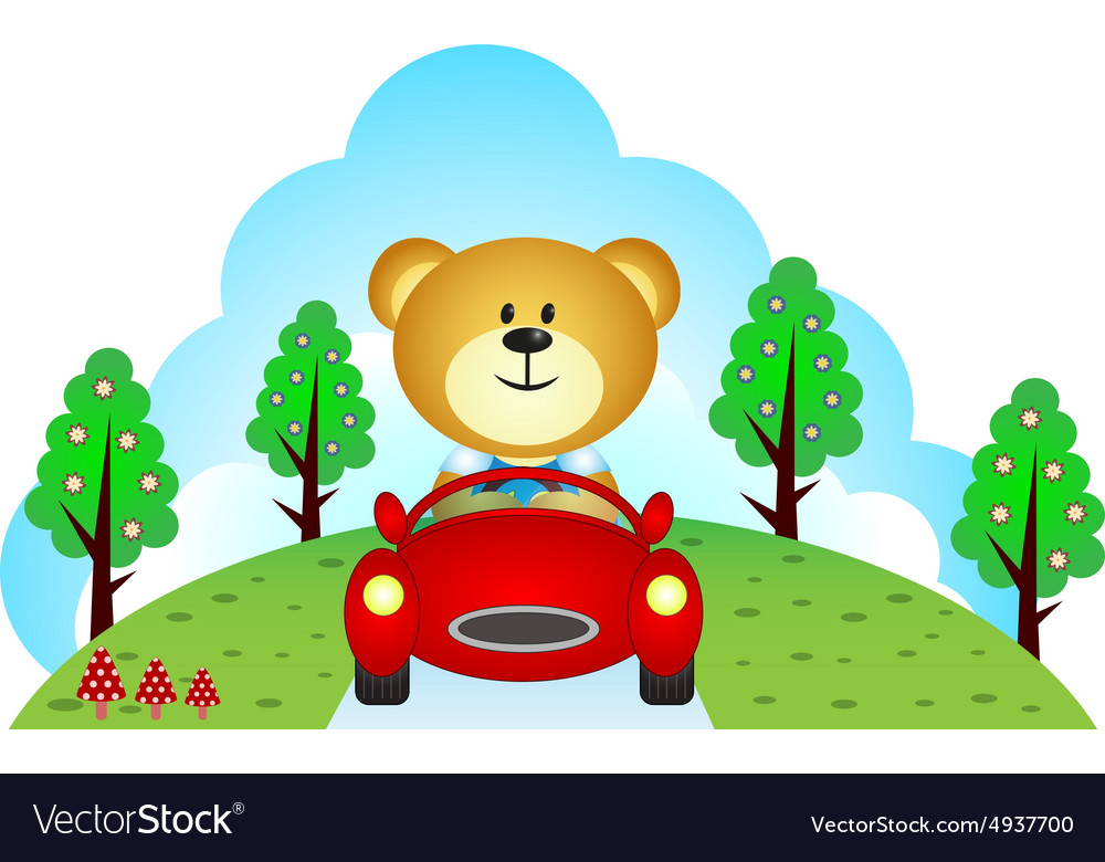 Little bear driving a car vector