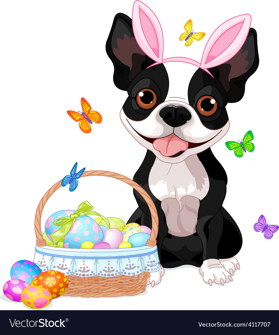 Boston terrier with easter basket vector