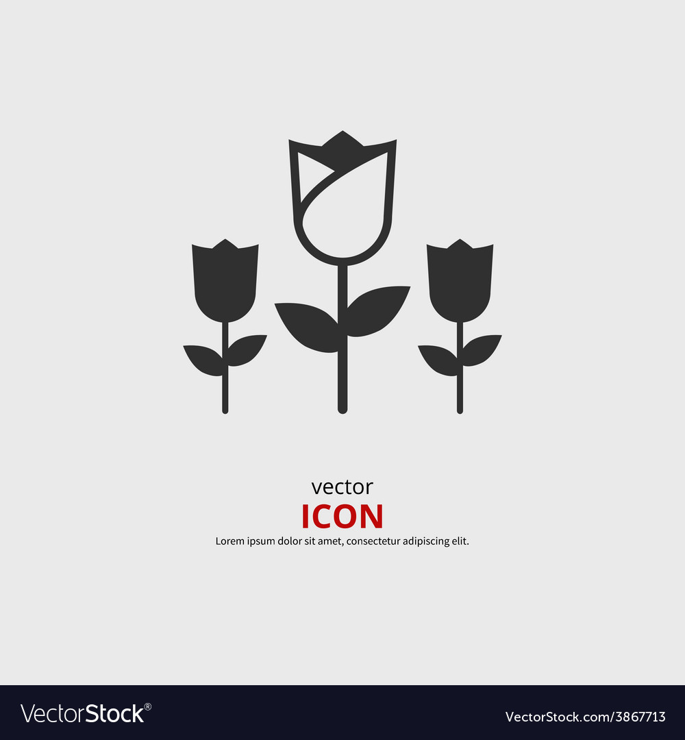 Tulip icon vector