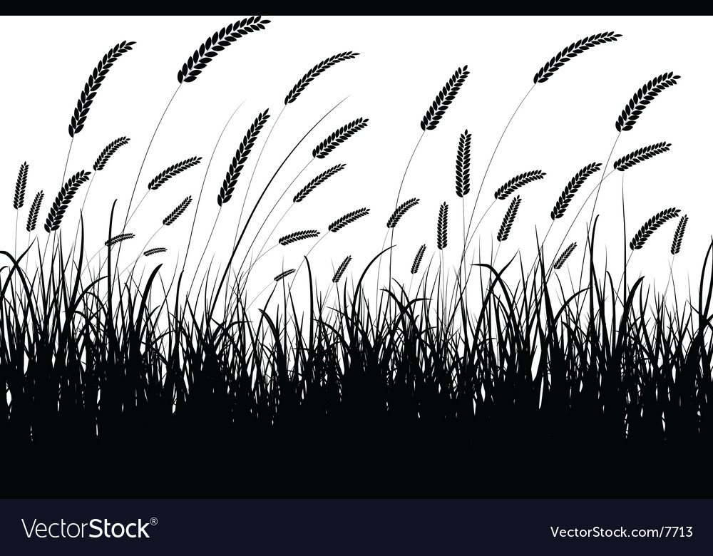 Wheat silhouette vector