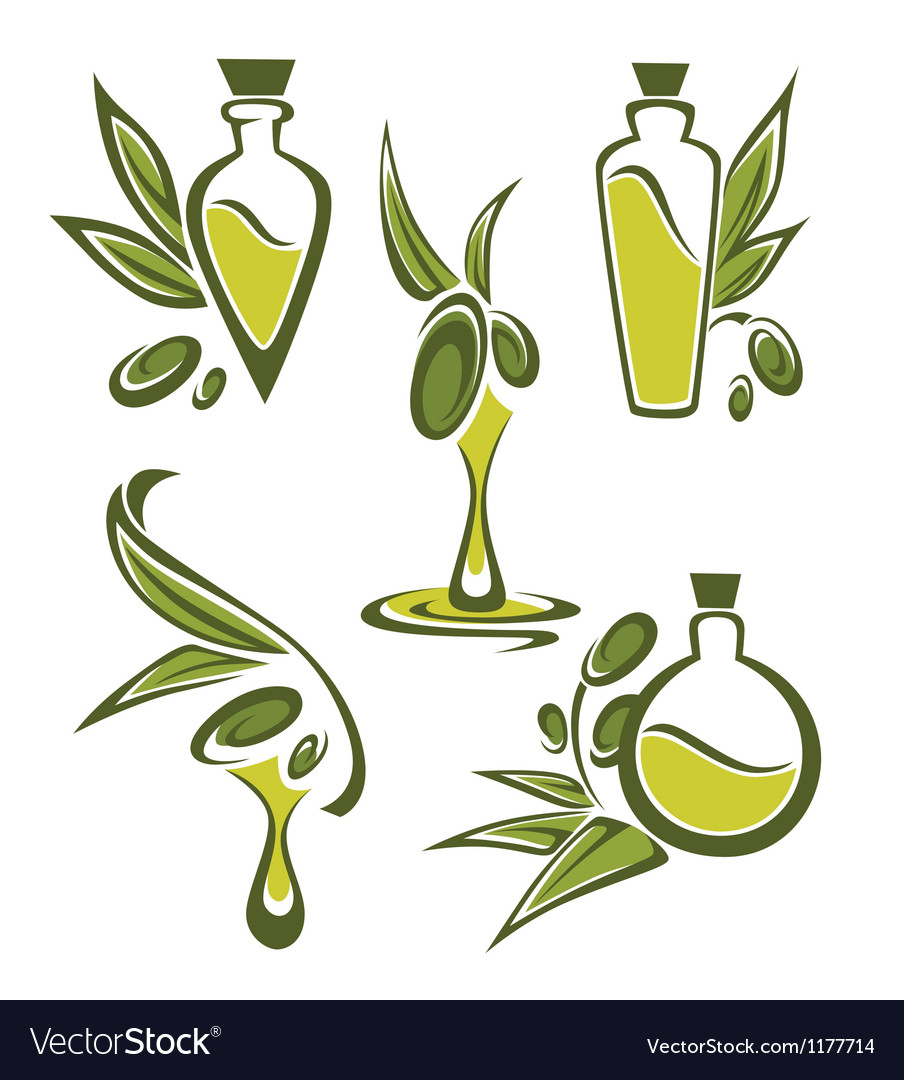 Green olive and oil vector