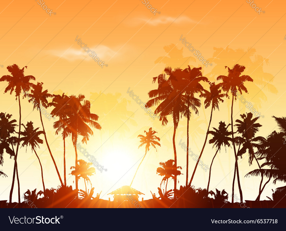 Palms silhouettes at orange sunset sky vector