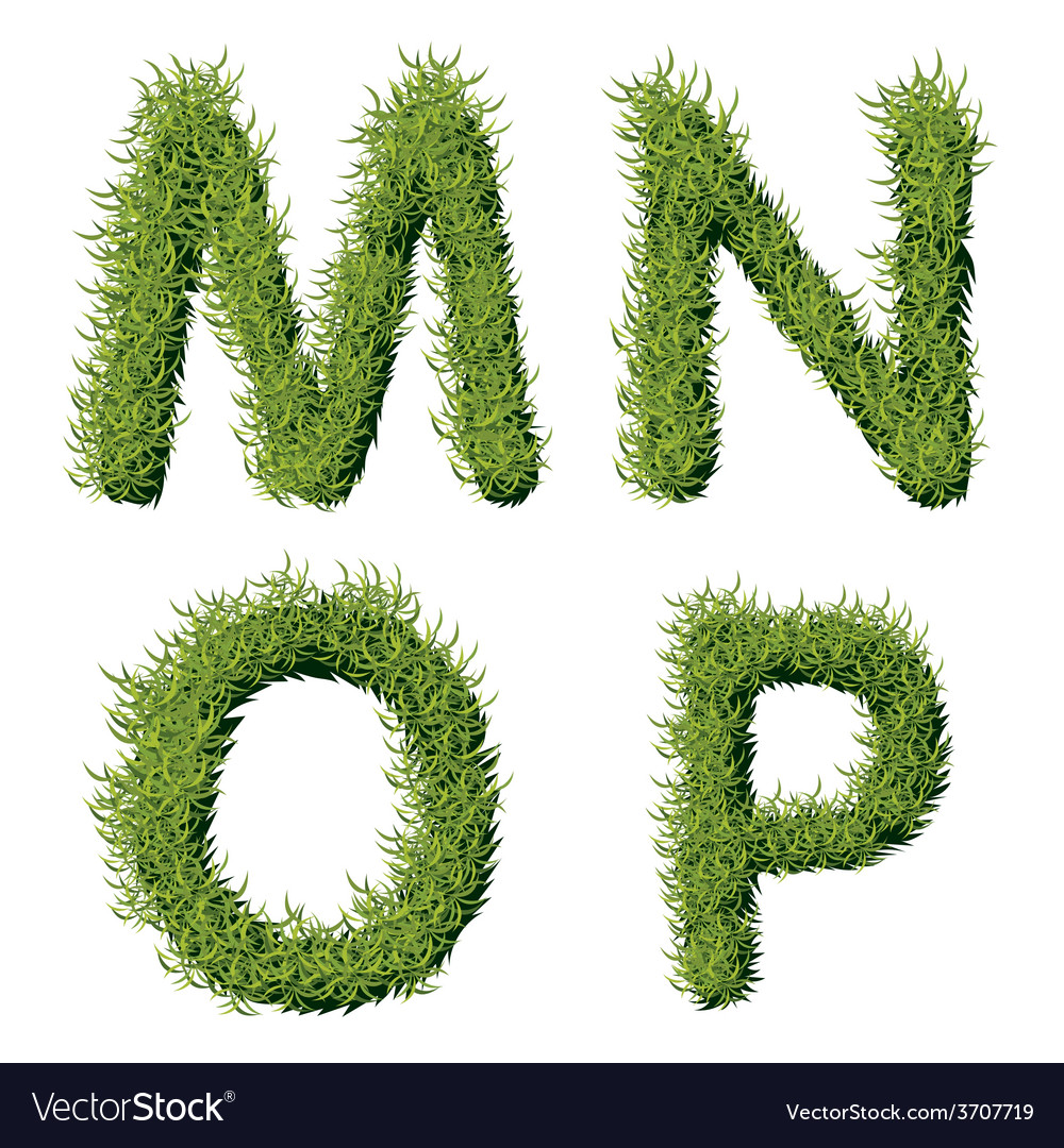 Green grass alphabet m n o p vector