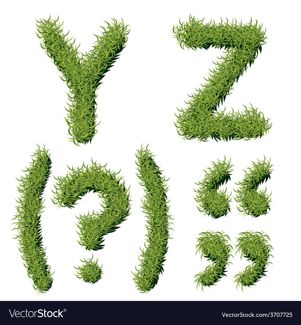 Green grass alphabet y z vector