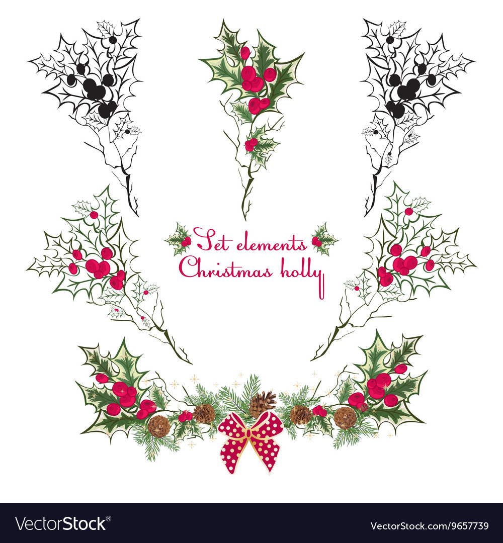 Set hand drawing floral holly elements vector