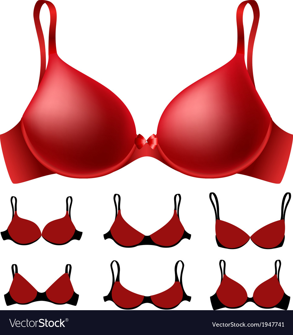 Red bra set vector