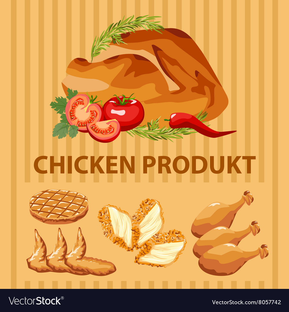Different parts chicken product vector
