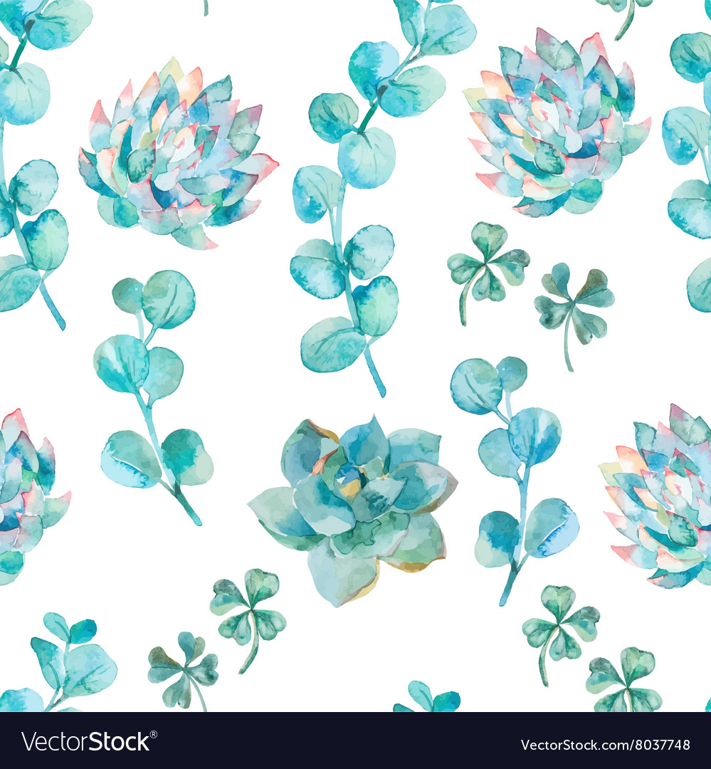 Watercolor eucalyptus leaves and succulent hand vector