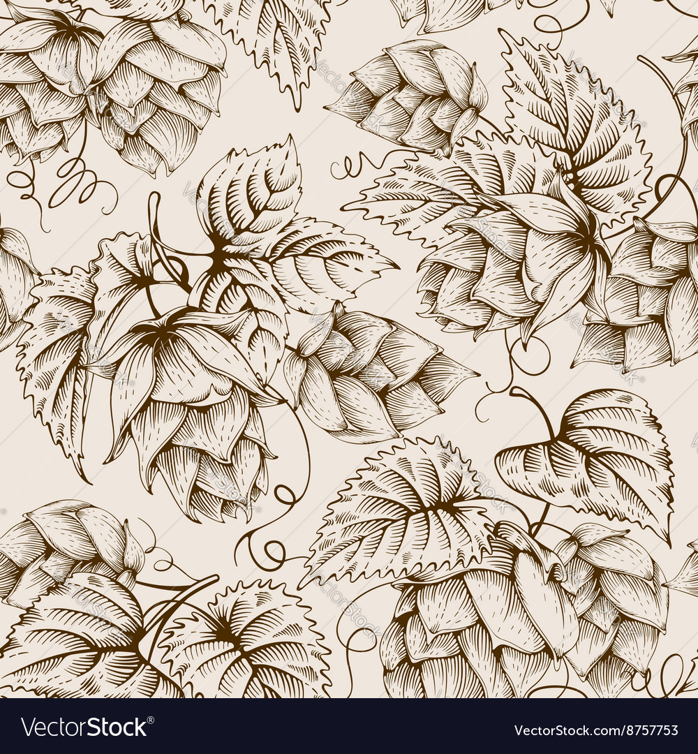 Hops graphic pattern vector