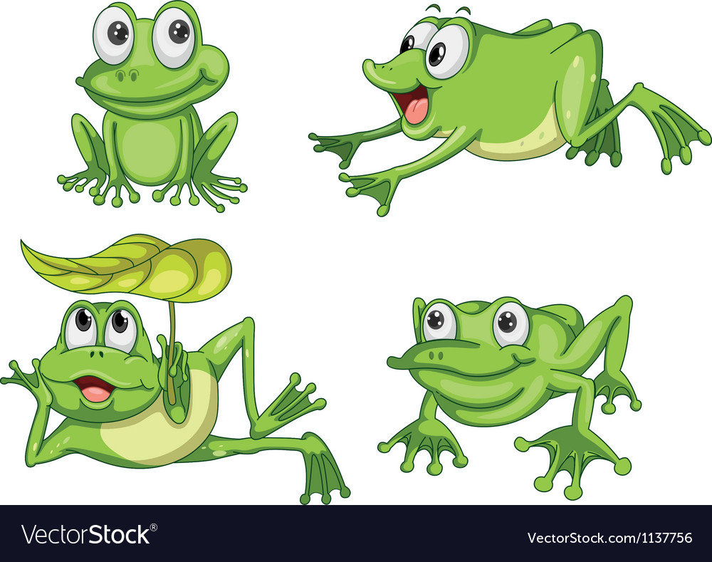 Green frogs vector