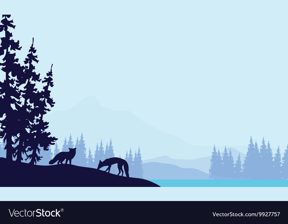 Blue backgrounds fox silhouettes vector