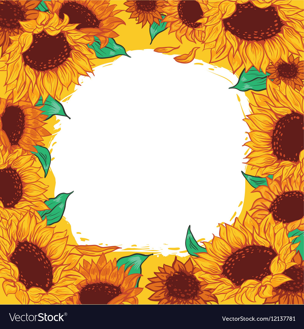 Frame pattern flower sunflower vector
