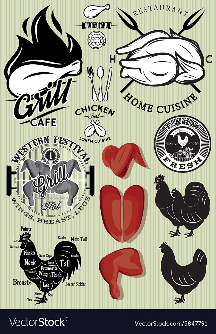 Set of templates on the theme of chicken for vector