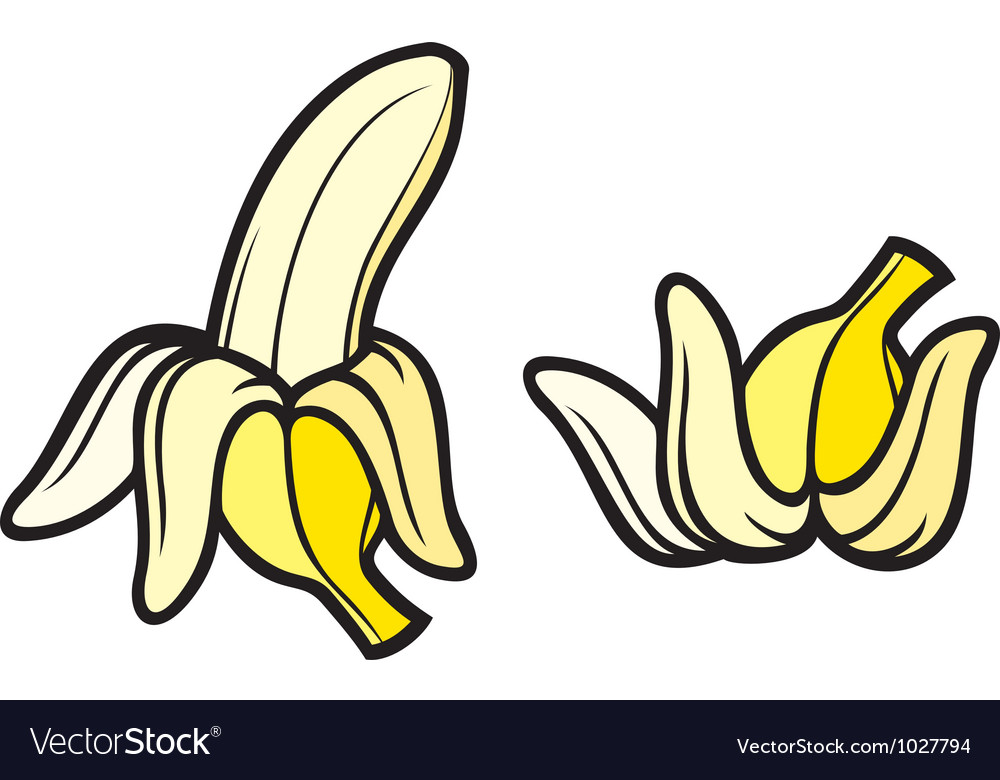 Peeled banana and banana vector