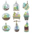 Succulents Icons Set vector image vector image