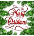 Merry Christmas retro background with fir branches vector image