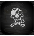 Hand Drawn Pirate Skull and Bones vector image