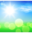 Summer sunshine background vector image