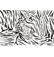 tiger pattern background vector image vector image