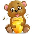 bear eats honey vector image