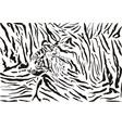 Tiger pattern background vector image