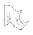 Rhino head wild animal africa exotic vector image