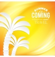 Summer background and tropical palm vector image vector image