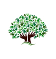 Friendship connection tree image vector image vector image