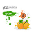 apricot hand drawn watercolor fruit on white vector image