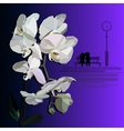 White orchid witha dating couple vector image