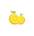 orange fruit logo vector image