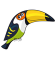 Toucan Cartoon african wild animal character vector image