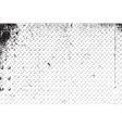 DSC 0012156765 vector image