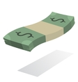 Pack of american currency vector image