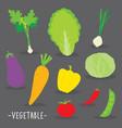 vegetable food cook cartoon vector image