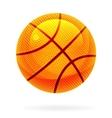 orange basket ball vector image