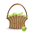 Basket of green apples vector image